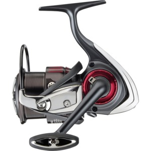 Mulineta Daiwa Tournament QD
